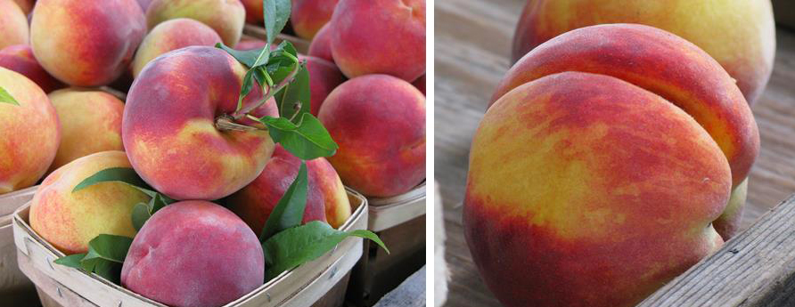 Perfect Peaches