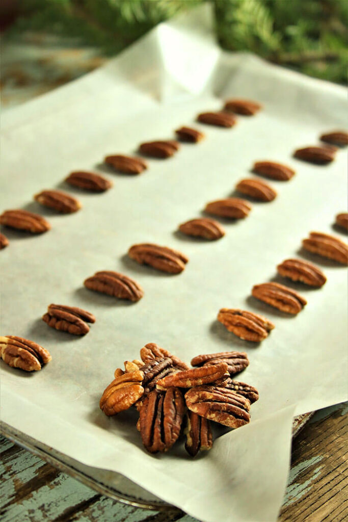 Rows of Pecans