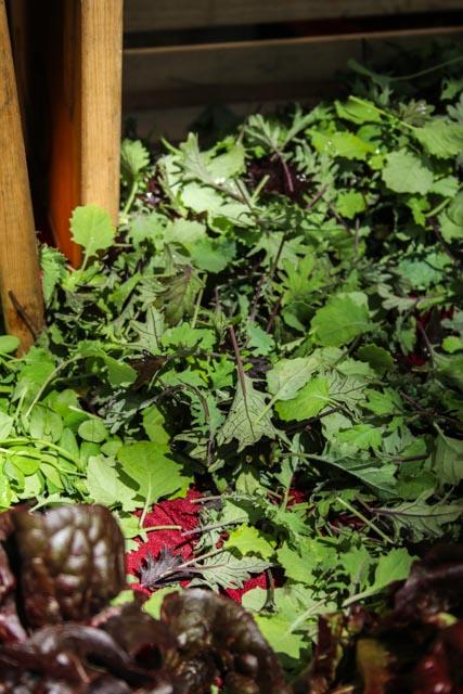 Market Greens, Baby Kale