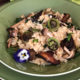 Fiddlehead fern, ramp and wild mushroom risotto fi