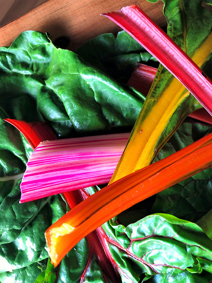 Chard in all the colors of the rainbow